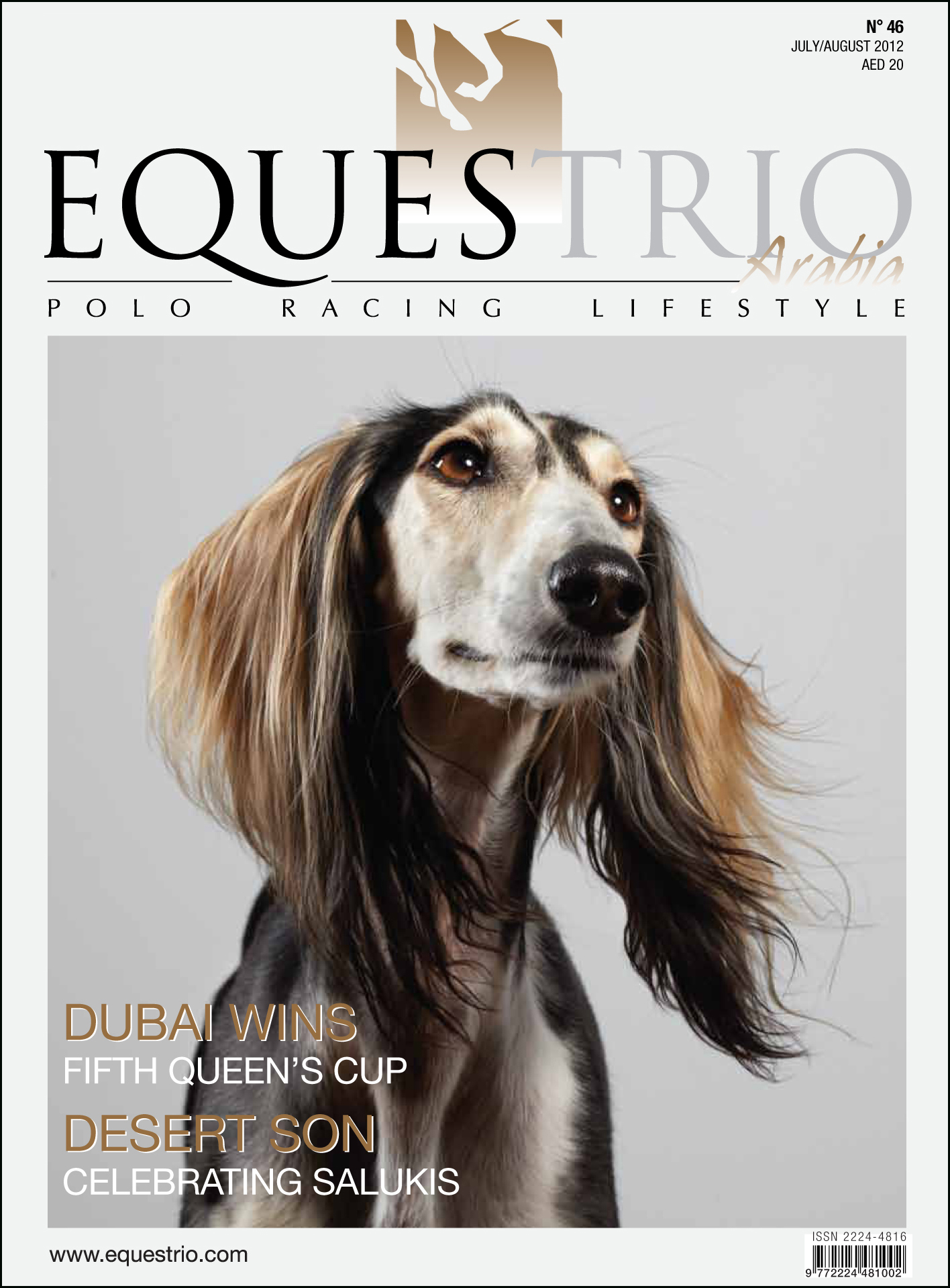 Equestrio magazine feature on the Arabian Saluki