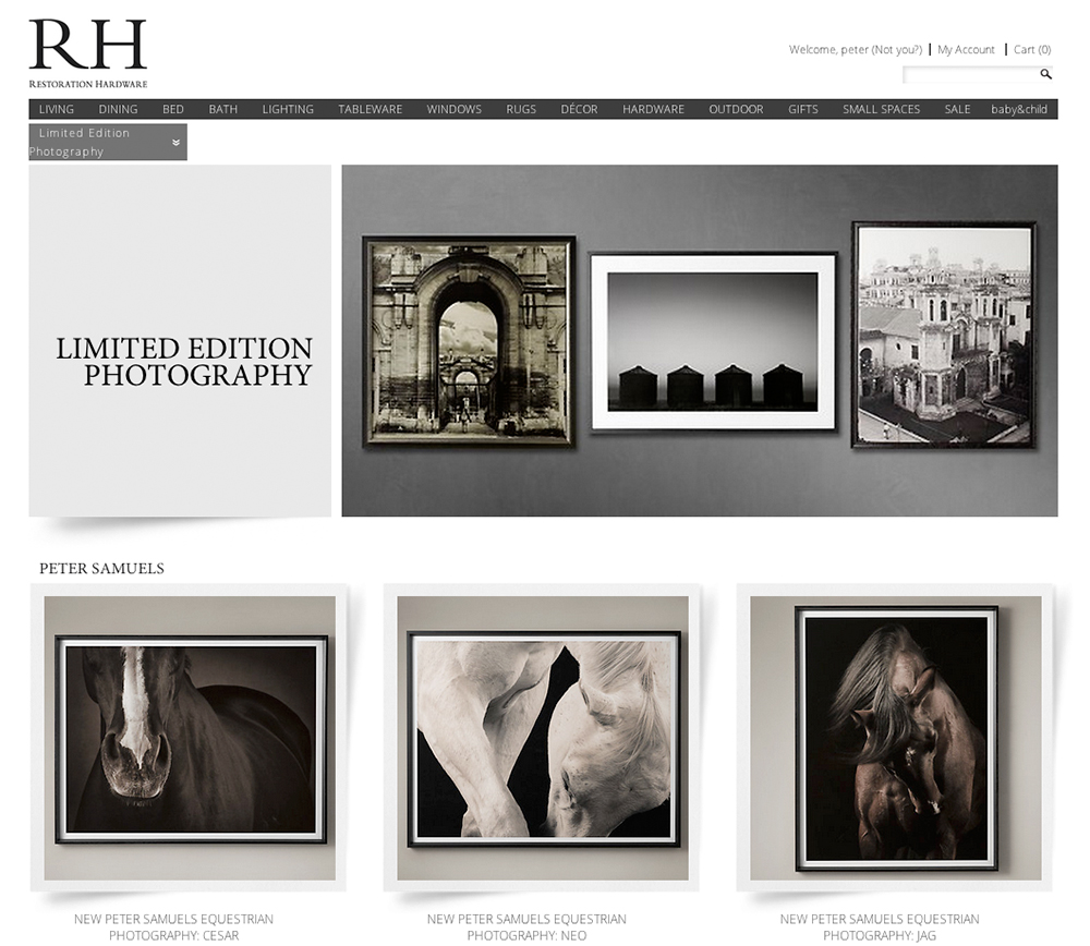 Restoration Hardware adds Peter Samuels' fine art horse equestrian work.
